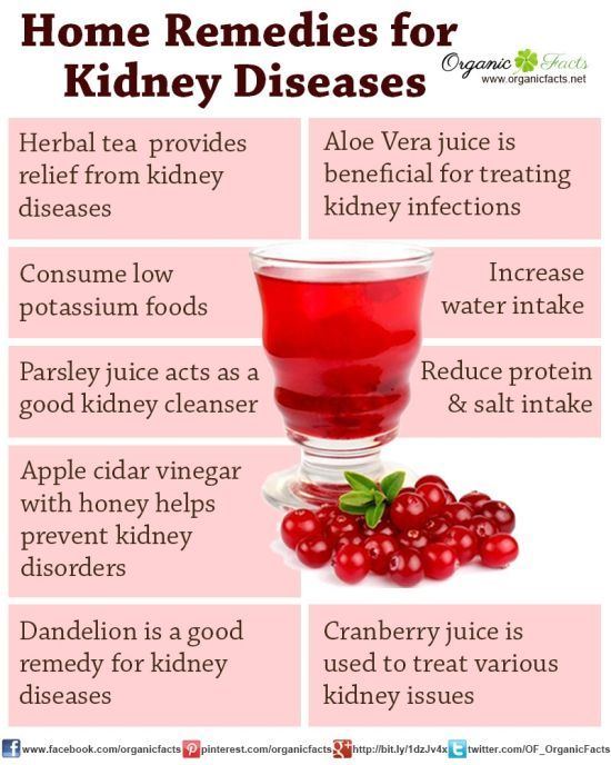 Natural Cures Kidney Failure Dogs