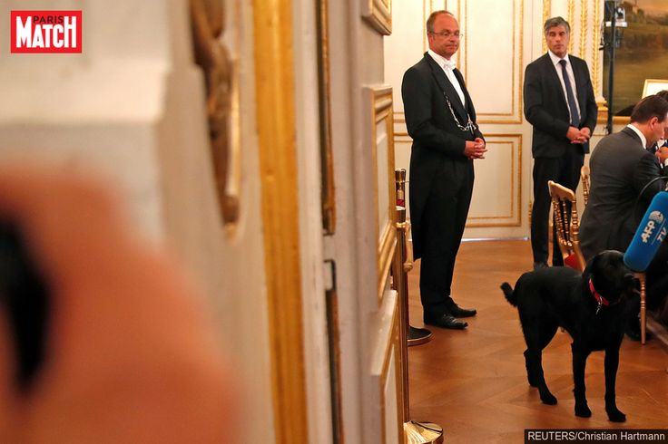 Emmanuel Macron et son épouse Brigitte ont adopté ce week-end à la SPA uncroisé Griffon/Labrador noir qu'ils ont baptisé Nemo.