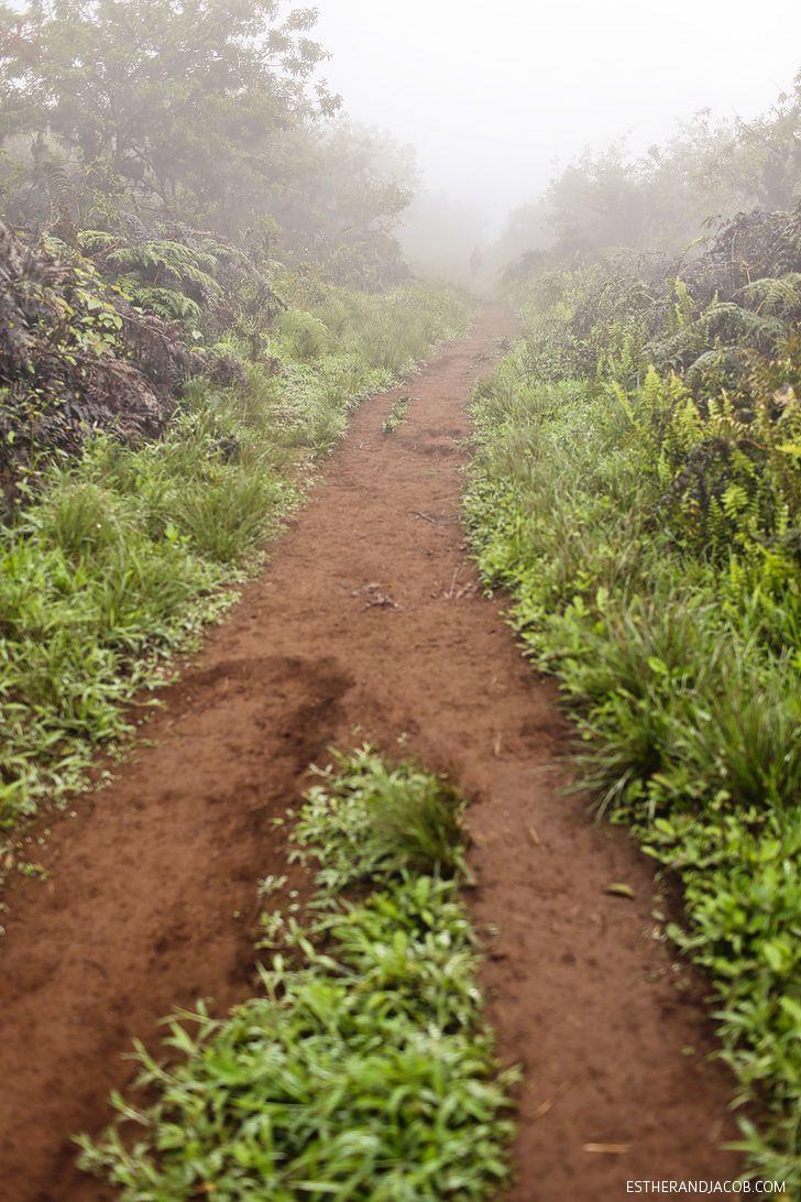Sierra+Negra+Volcano+Hike+on+Isabela+Island.