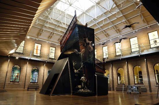 Tasmanian Museum and Art Gallery, free