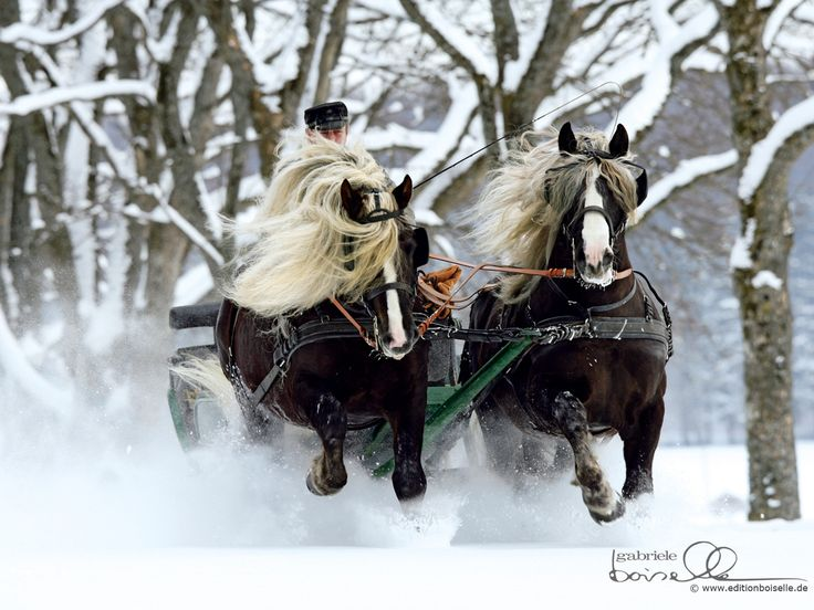 pin snow ride carriage - photo #7