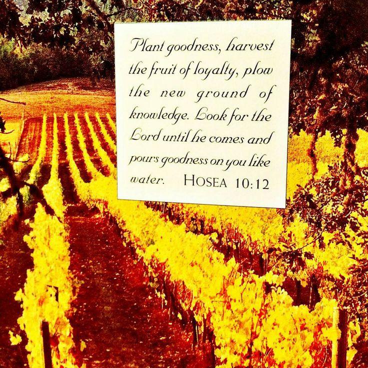 Word Worthy Wisdom: Abba Father, Word Of
