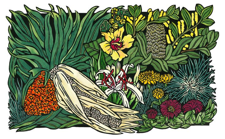'Seaside Wildflowers'  http://lynetteweir.com/seaside-wildflowersaustralian-linocut-artist/ Limited Edition Handcoloured Linocut by Lynette Weir  © copyright Lynette Weir