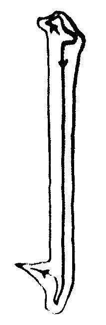 Calligraphie chinoise : les traits verticaux