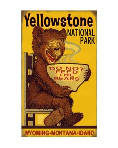 Yellowstone National Park.  I went with my parents and still remember Old Faithful and the huge bison!