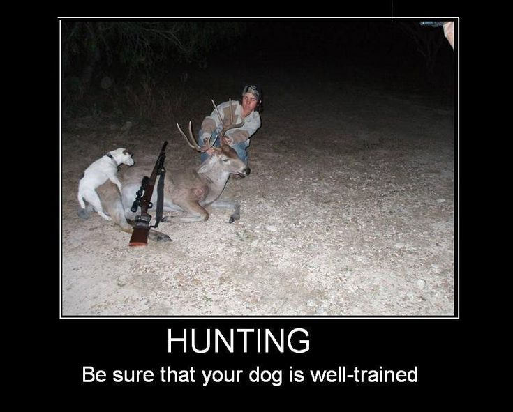 hunting quotes for girls hunting category funny pictures
