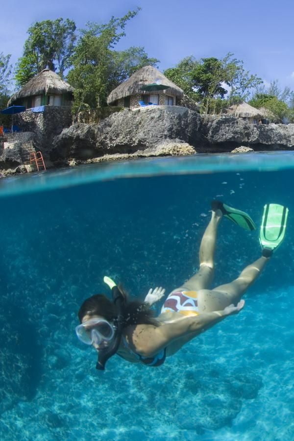 The 10 best snorkeling spots in the Caribbean: snorkel alongside wild dolphins, whales, stingrays, nurse sharks, and more