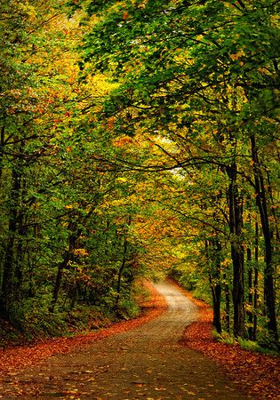 The Adirondacks - dondennisphotography