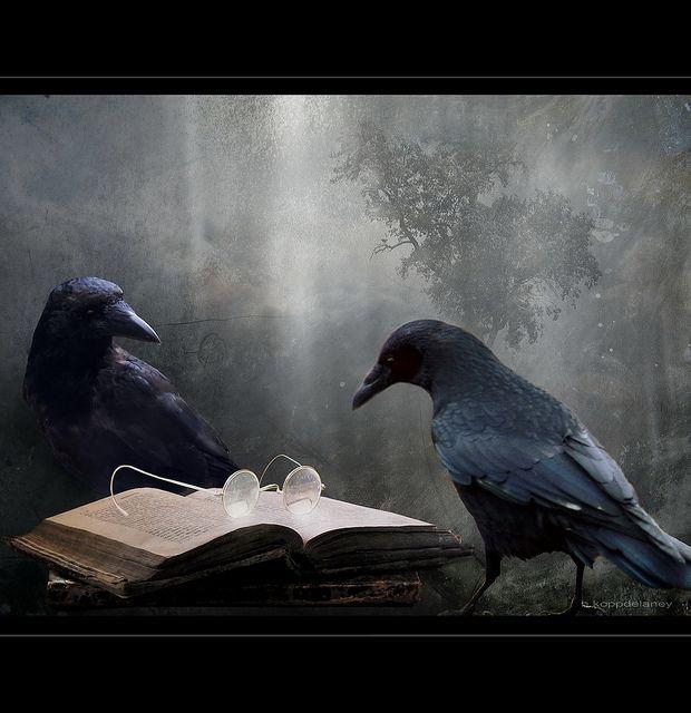 HKD    Reader    They adore Edgar Allen Poe :-))    Searching for the Wisdom of the Past    HKD    Nightwish   oder   Die Erscheinung des Wesentlichen    Ich hatte gerade ein paar Zeilen für meine nächste Arbeit in mein Notebook getippt, als ein älterer, untersetz