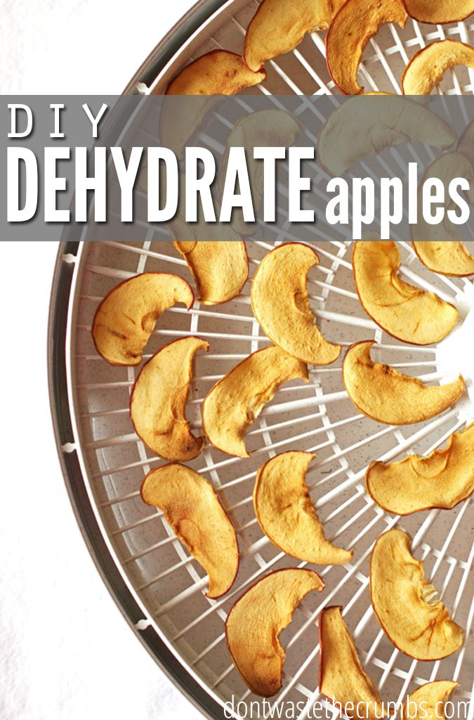 Healthy, simple and frugal snack for you and your family, helping you avoid the junk food in supermarkets! Learn how to dehydrate apples with this easy diy.:: Dontwastethecrumbs.com