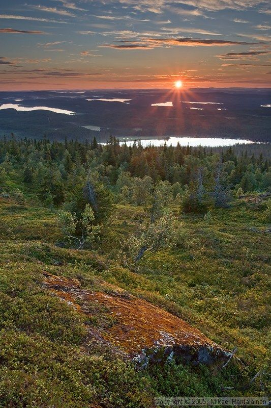 Iivaara, Finland  -  (the pin via Michele Rasmussen  --   http://www.pinterest.com/pin/570901690235899999/ )