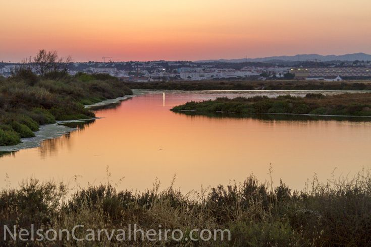 Sunset at Tavira Backwaters by NelsonCarvalheiro.com