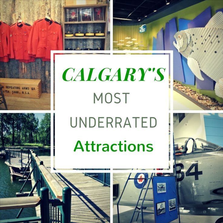 Calgary has many world class attractions that certainly deserve the attention that they are given. On this list though you will other excellent attractions that you may have overlooked but are definitely worth a visit. 1. YouthLink Calgary Police Interpretive Centre The Police Interpretive Centre has been opened since the fall of 2015 and is open to the public...Read More »