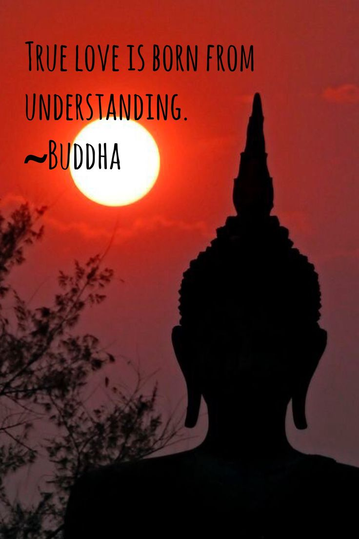 1000 buddha quotes love on pinterest famous buddha