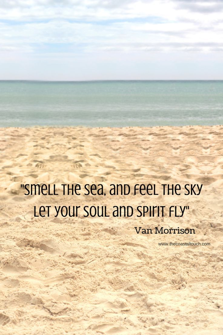 28 travel quotes to inspire your next beach trip Loved it today!! Deep sea fishing, paddle boarding....life's amazing!! I am rocking my hot new swim suits!! Wow! Amazing what hard work, sweat, and dedication does to your body! Yeah, I'm fit!!