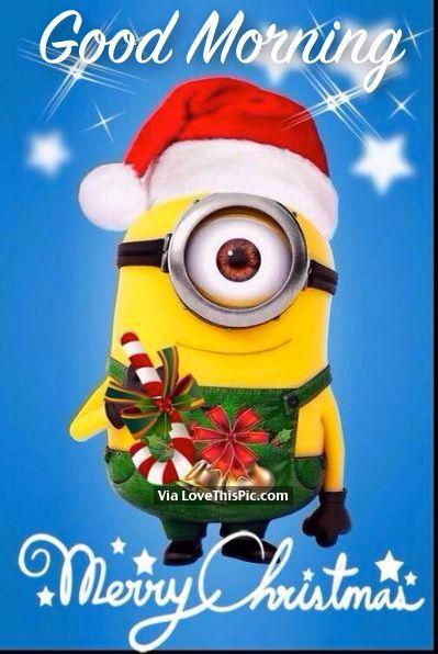 best 25 merry christmas minions ideas on pinterest minions - Minions Merry Christmas