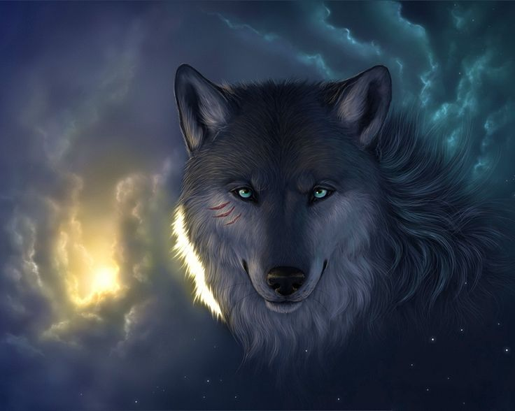 Google Image Result for http://memberfiles.freewebs.com/00/75/42137500/photos/-Wolves/Photoshop_Wolf_005239_.jpg      cool picture