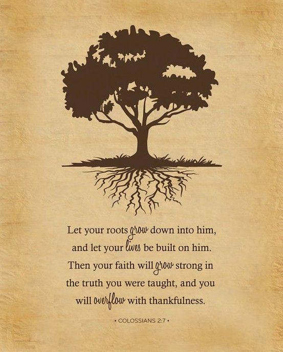 #Scripture                                Colossians 2:7
