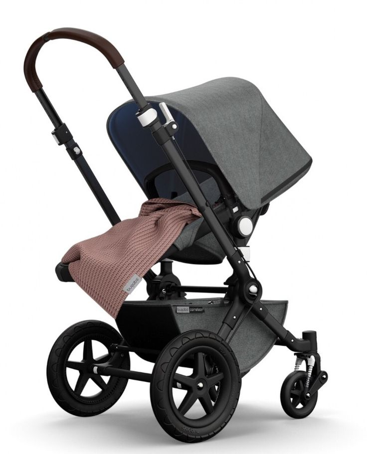 If i got a traditional stroller, i was stuck between the Bugaboo cameleon  or the nuna.