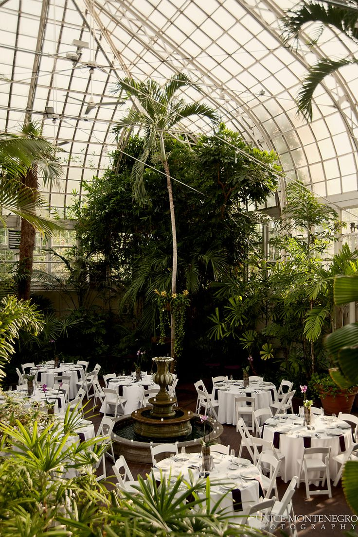 Wedding reception in the Palm House at Franklin Park Conservatory, Columbus, Ohio