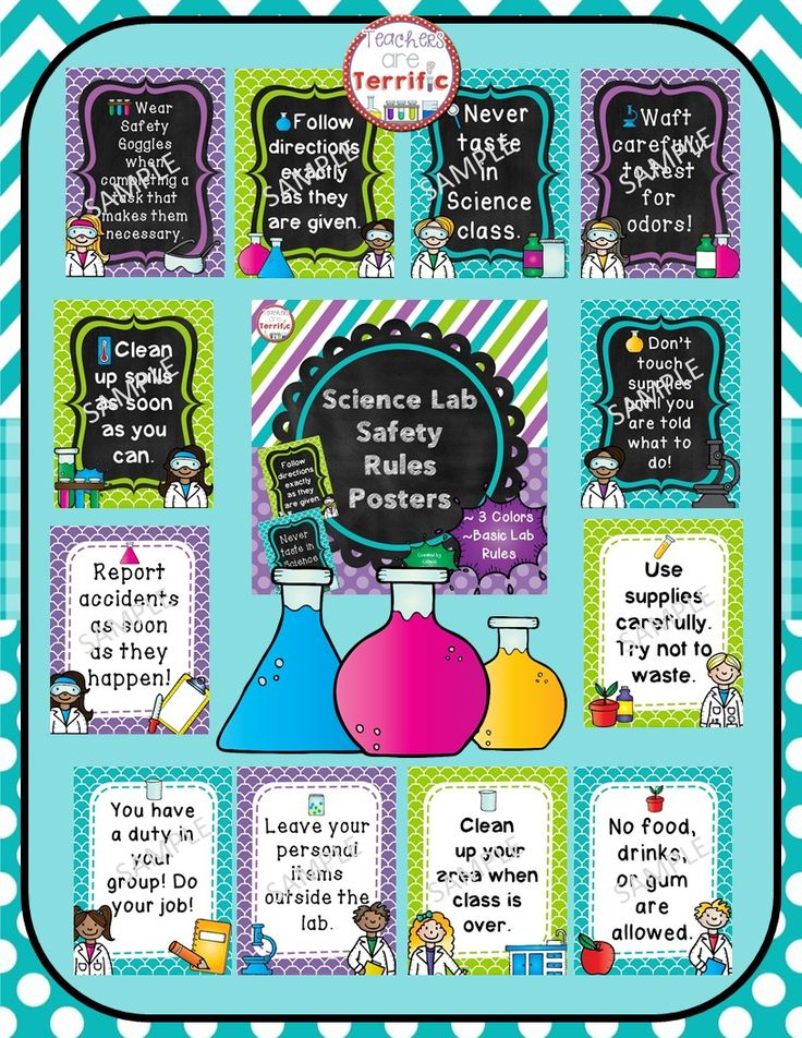 Amazing color in this set of Science Lab Safety Rules Posters! Decorated with lime, turquoise, and purple!
