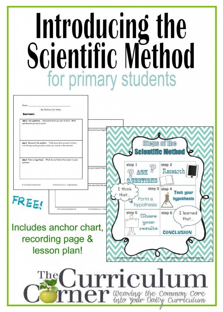 Pinterestu0027teki 25u0027den fazla en iyi Scientific method worksheet - scientific method worksheet