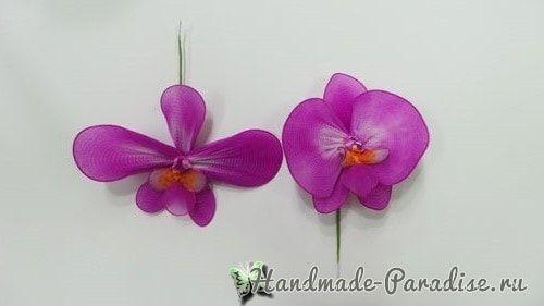 Орхидея Фаленопсис из капрона. Мастер-класс (12)
