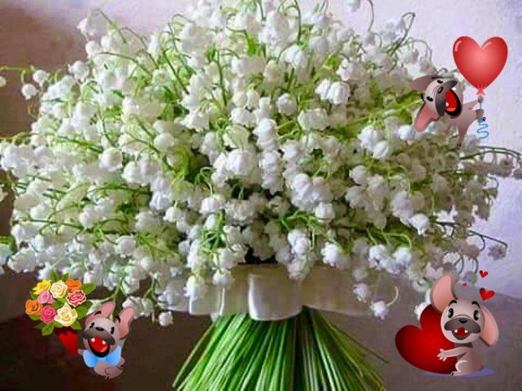 il Mio Giardino Incantato: Buongiorno & Buon 1° Maggio Amorucci miei!!!