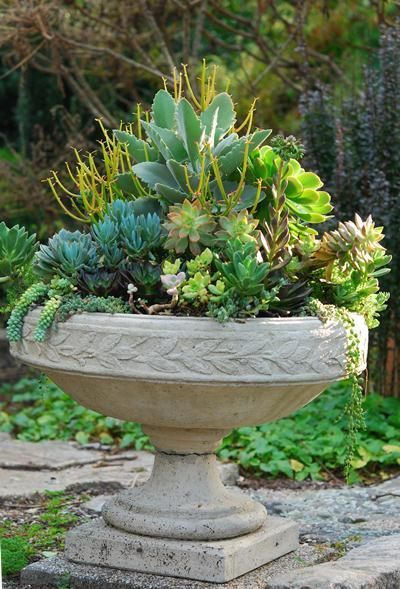 September Report: Successful Containers – Garden Foreplay