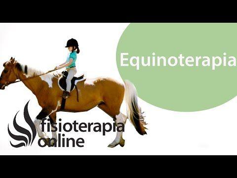 Terapia asistida con animales. Equinoterapia. Visión general desde la fisioterapia - YouTube