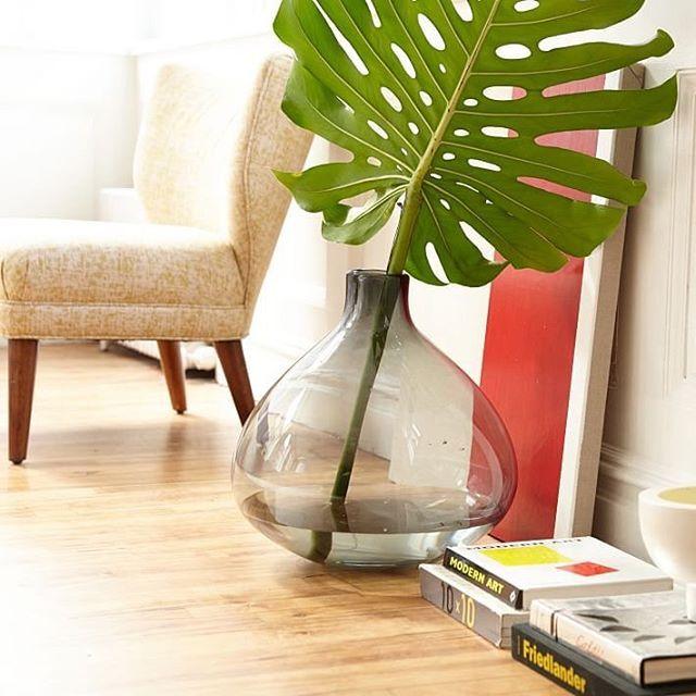 A big vase needs a big leaf.  Shop vases + bring some life inside with the link in bio. #mywestelm #lushlife