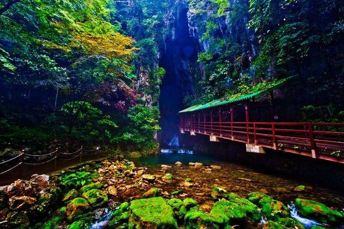 自信を持ってオススメ!本当に美しい景勝地の多い「山口県」の観光地12選   RETRIP