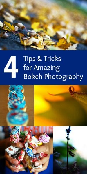 4 Tips and Tricks for Amazing Bokeh Photography