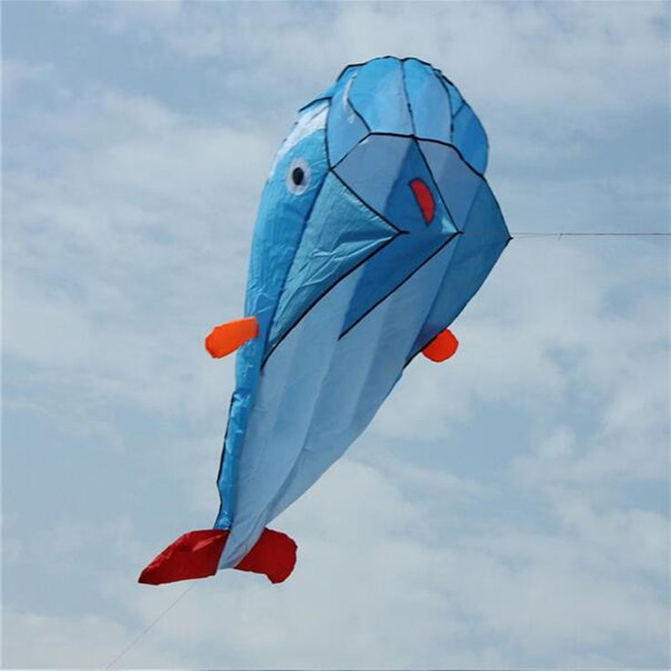 Like and Share if you want this  High Quality 3D Huge Soft Parafoil Giant Dolphin Blue Kite Outdoor Sport Easy to Fly Frameless     Tag a friend who would love this!     FREE Shipping Worldwide     #BabyandMother #BabyClothing #BabyCare #BabyAccessories    Get it here ---> http://www.alikidsstore.com/products/high-quality-3d-huge-soft-parafoil-giant-dolphin-blue-kite-outdoor-sport-easy-to-fly-frameless/
