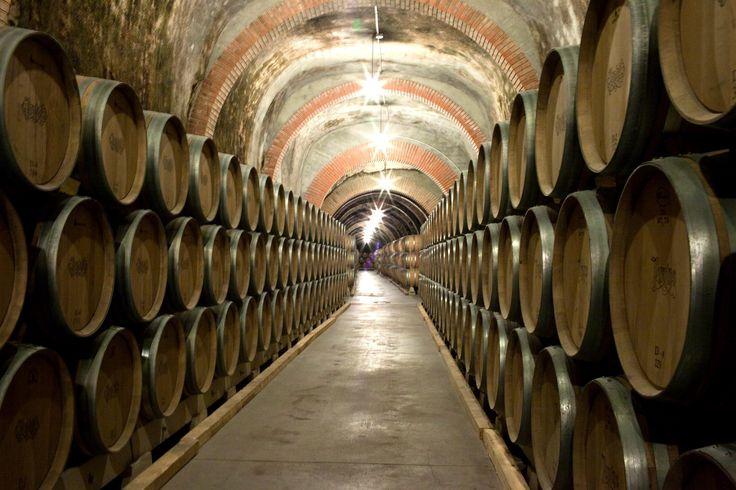Excavados en el mismo monte del castillo de Peñafiel, las bodegas cuentan con casi dos kilómetros de galerías subterráneas con capacidad para 3.500 barricas de roble. Esta Bodega de Crianza, consigue la humedad y temperatura ideales para la crianza de los vinos.