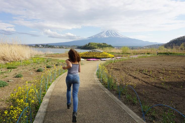Mt Fuji Day Trip Itinerary