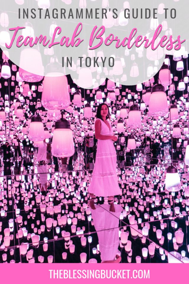 Guide to TeamLab Borderless Tokyo: An Instagrammer's Dream