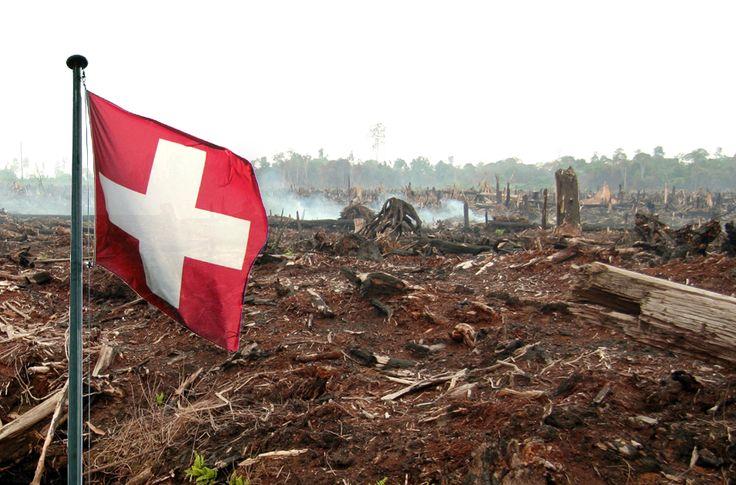 Die Schweiz verhandelt mit Indonesien und Malaysia über ein Freihandelsabkommen. Palmöl spielt dabei eine wichtige Rolle. Die beiden südostasiatischen Länder sind weltweit die größten Exporteure des tropischen Pflanzenöls – und die größten Regenwaldabholzer.Bitte helfen Sie den Freihandel mit Palmöl zu stoppen.