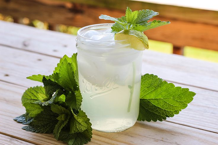 Lemon Balm Iced Tea, The easiest thing to do with the Lemon Balm in your Garden