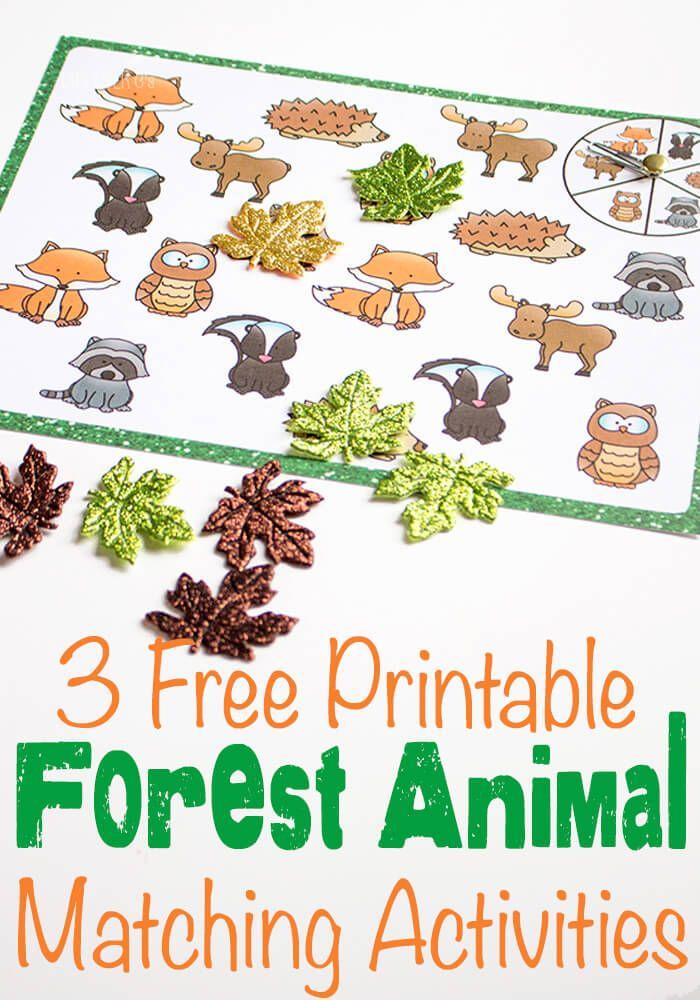 best 25 forest animals ideas on pinterest. Black Bedroom Furniture Sets. Home Design Ideas