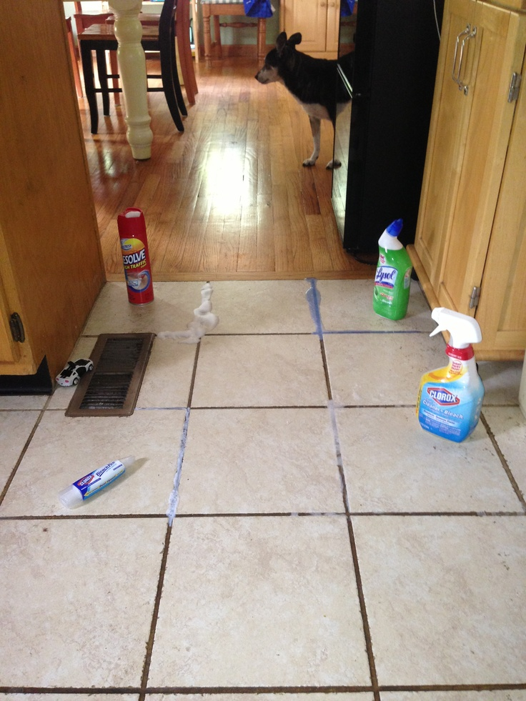 I Tried Four Methods To Clean The Grout On My Kitchen Floor Lysol Toilet Bowel Cleaner With