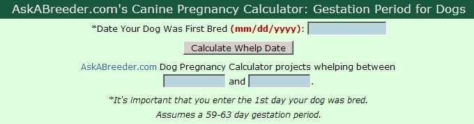 Canine Pregnancy Calculator: Gestation Period for Dogs