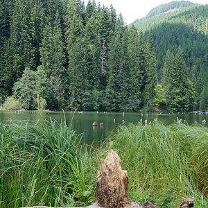 The Killer Lake – Gyilkos-tó (Lacul Rosu) – Transylvania / Romania | Cookbook Travels