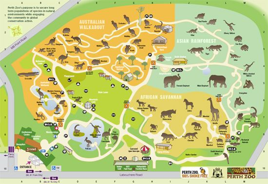 Perth Zoo Australia Maps Pinterest Family
