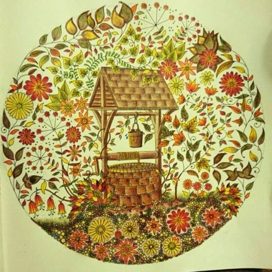 Find This Pin And More On Well Secret Garden Poo Jardim Secreto Photos New Coloring Books