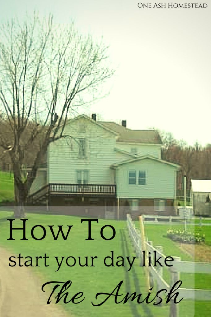 How to Start Your Day Like the Amish: http://oneashhomestead.com/2015/11/how-to-start-your-morning-like-the-amish/ via @oneashfarmdairy