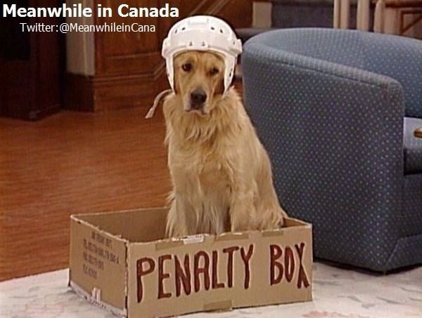 How we train our dogs in Canada