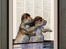 Marmotta illustrazione, pagina dizionario, #013