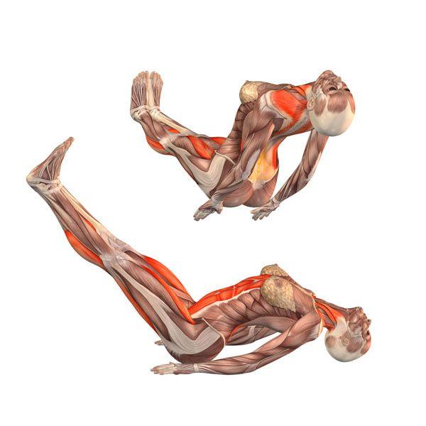 Fish pose with straight legs up - Urdhva Matsyasana - Yoga Poses | YOGA.com