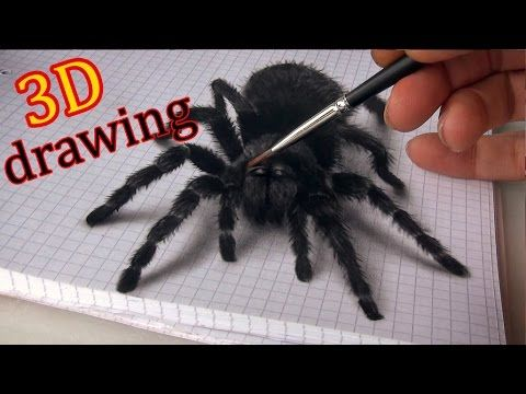 Drawing a 3D Spider!  I can't do it, but it would be perfect for Halloween!